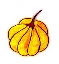 Handdrawn pumpkin sketch