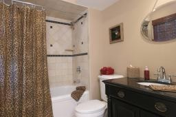 Leopard Bath Pic