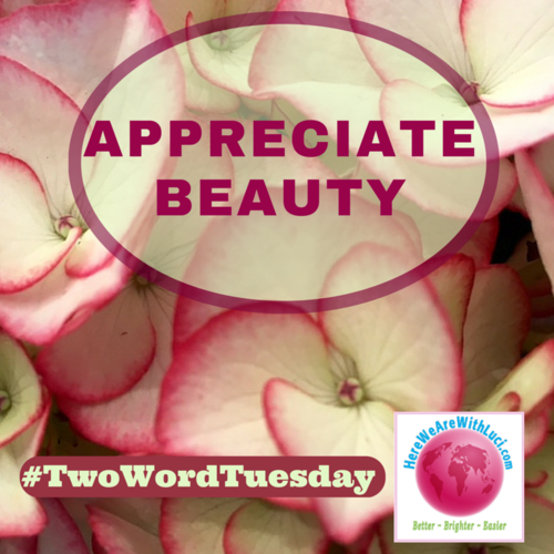 Appreciate beauty twt-2