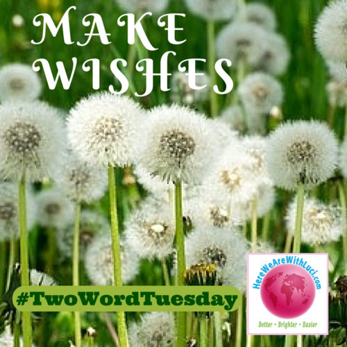 Make wishes