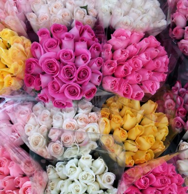 Roses of many colors at flower market