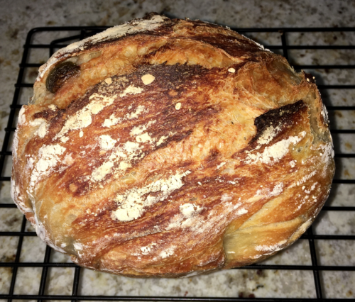 Loaf of freshly baked, homemade, no-knead bread baked without a bread maker