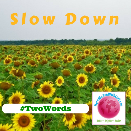 #TwoWords Slow Down with Sunflower field